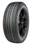 ROYAL BLACK  ROYAL PERFORMANCE 225/55 R16 99 W Letní